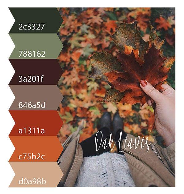 sugarmoon_colorpalette_oakleaves